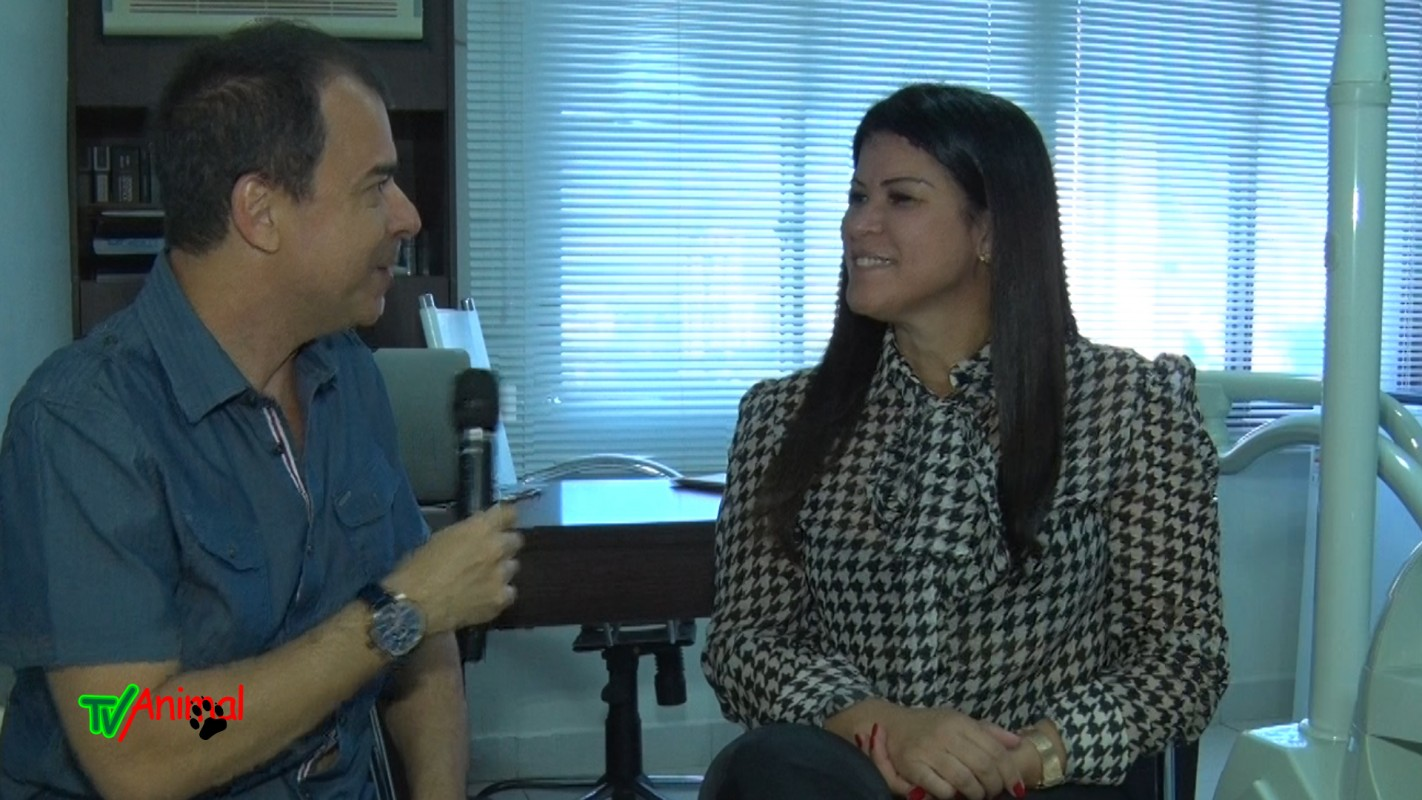 j junior entrevista a dentista dra vanessa